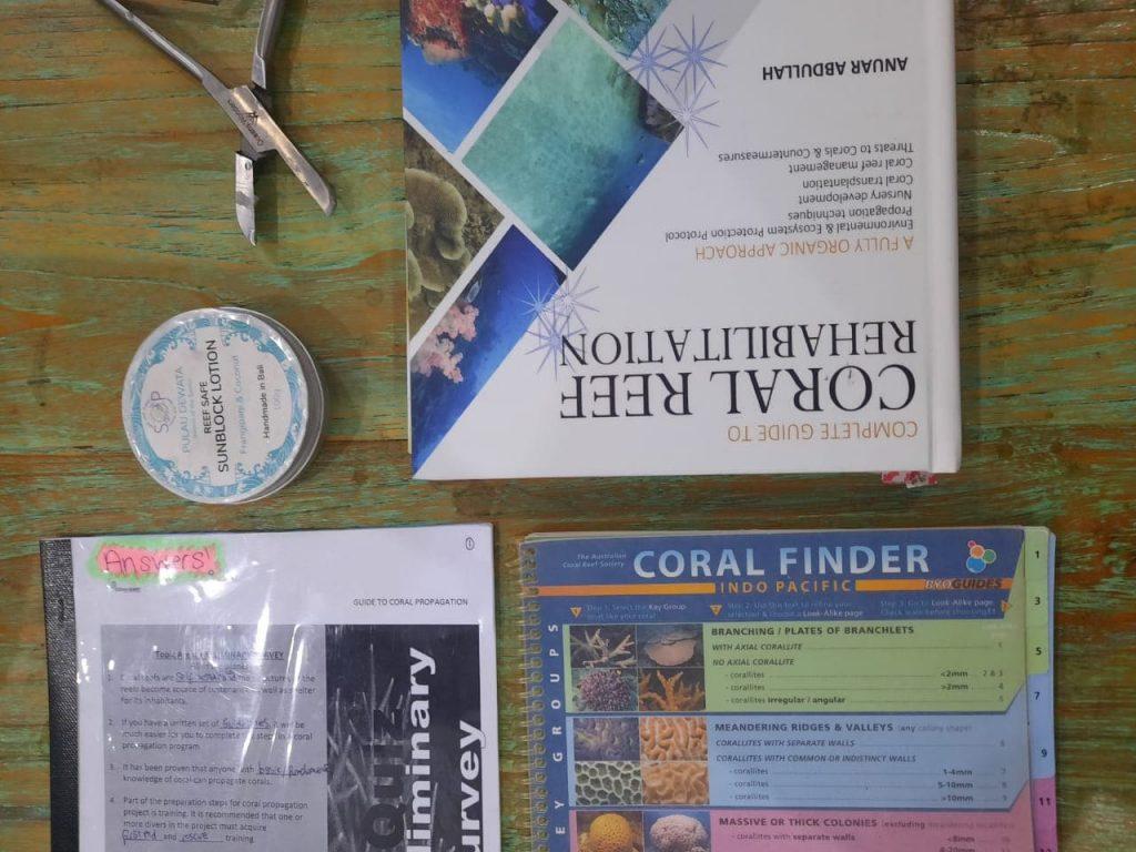 Coral Reef Rehabilitation Course Gili Trawangan Gili Eco Trust
