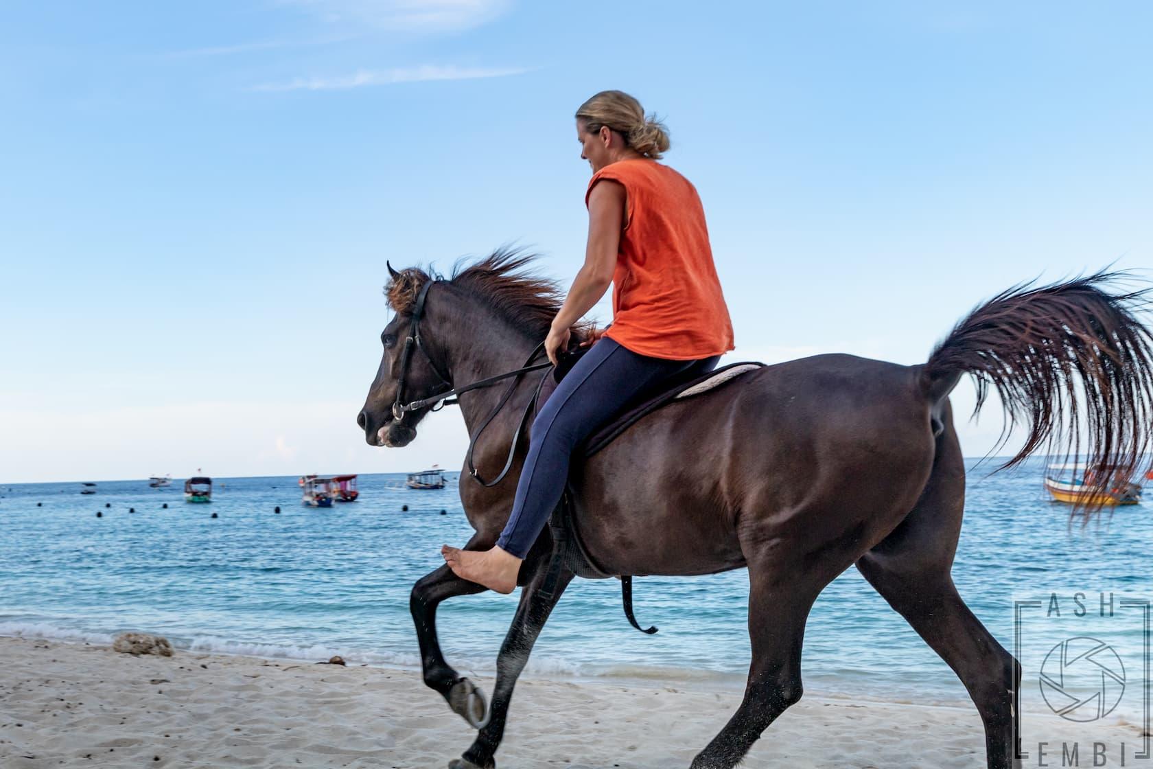 Horse riding in Gili Trawangan